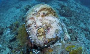 Stone head of lord Buddha photographed during a dive at the Temple, near Pemuteran, Bali