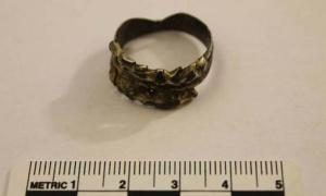 What did this ring with two wolf heads symbolize to the Viking who wore it?