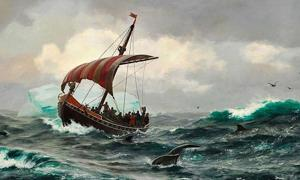 Vikings. Summer in the Greenland coast circa year 1000.