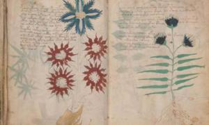 Two pages from the Voynich Manuscript. Has the Voynich Manuscript code finally been cracked?
