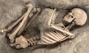 Skeletal remains found in Wadi Faynan 16