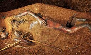 Star-Crossed Lovers? Criminals? Or Strangers? The Mystery of the Windeby Bog Bodies