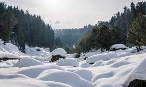 Remembering Winter in Kashmir: Shaping A Collective Memory of the Past