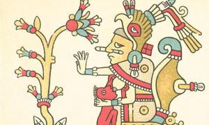 Xochiquetzal, with flower (Codex Fejérváry-Mayer, page 29)