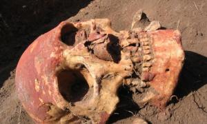 This image shows a Yamnaya skull from the Samara region colored with red ochre.