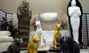 Ancient Egyptian practice of mummification now available