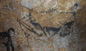 Some of the world's oldest cave paintings have revealed people had an ancient, yet advanced, astronomy. Animal symbols represent star constellations in the night sky, and are used to mark dates and events such as comet strikes, analysis from the University of Edinburgh suggests.
