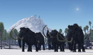 Ancient extinct species