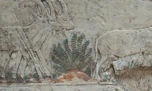 Ancient Artwork - Risk