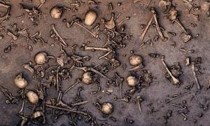 Excavation of an ancient battlefield in northern Germany revealed signs of an immense battle, such as closely packed bones, as seen in this 2013 photo of the site. One area of 12 square meters is said to have held 1478 bones, including 20 skulls.