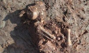 Ancient bog body found in Ireland