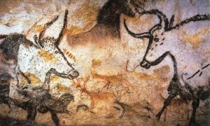 Aurochs in a Lascaux cave animal painting.
