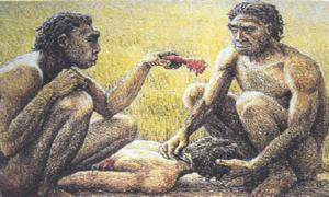Ancient Human Ancestors Ate Raw Meat and Insects, But They Cleaned Their Teeth