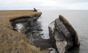In this photo you can see a collapsed block of ice-rich permafrost along Drew Point, Alaska. Ancient diseases released from such rapid change pose a dire threat to 21st-century human populations.            Source: Benjamin Jones, U.S. Geological Survey / Public domain