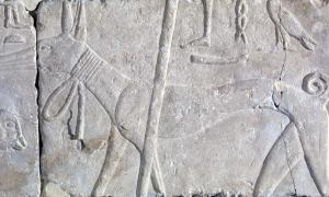 Dogs, Ancient and Modern: A Mythological History