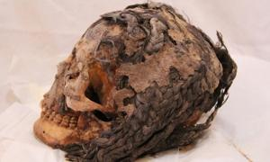 3,300-year-old Egyptian woman with hair extensions discovered in Armana