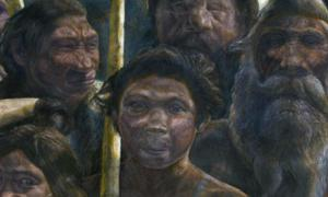 Artist's depiction of ancient hominids.