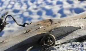 Ancient Ski discovered in Norway