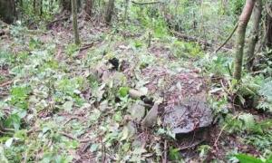 Legendary Ancient Villages in Fiji