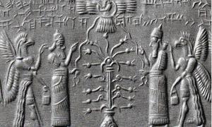 Ascension Myths