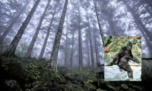 Scientists Who Believe in Bigfoot
