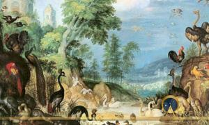 The Sacred and Ancient Legacy of our Feathered Friends