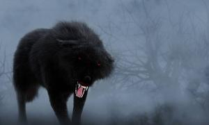 A menacing, shaggy black dog with red, glowing eyes