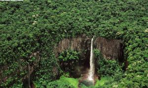 Bolivian Amazon
