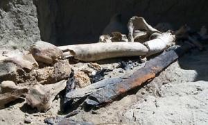 The bones and the sword in the grave of the first known warrior woman of the ancient Kangyuy people of the steppes of Kazakhstan.