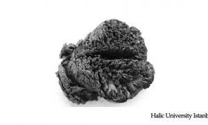 Bronze Age Brain - Boiled