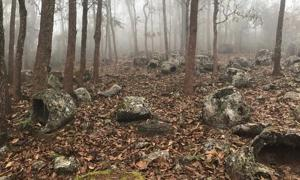 Group 1, burial jars shrouded in mist at Site 52. Source: Australian National University / Fair Use.