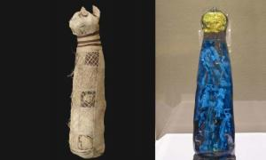 The wrapped cat mummy and the 3D reconstruction of what is hidden inside. Source: Musée des Beaux-Arts de Rennes