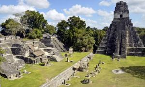 The central acropolis at Tikal