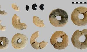 Twelve of the fourteen rings made of clay are shown, as well as the charred organic cereal rings. Source: (B. Biederer / CC BY-SA 4.0)