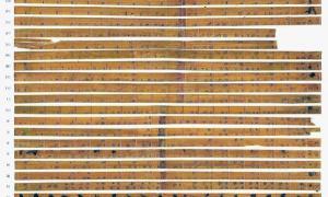 Bambo Strips in China