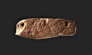 77,000-year-old engravings from Blombos Cave used in cognitive experiments. Source: Original Rock Art / CC BY-SA 4.0