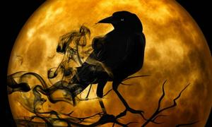 Ravens and Crows have been symbols and played a role in myth since ancient times.