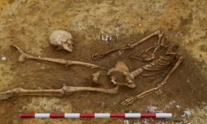 Decapitated skeleton excavated at Great Whelnetham, UK