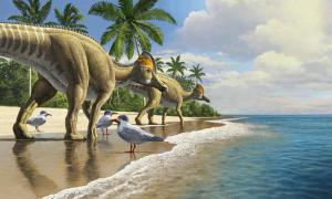 New Duckbill Dinosaur Evidence Shows That Dinosaurs Crossed Oceans