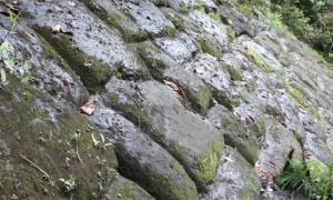 Lost City of Giants - Ecuador