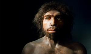 Homo antecessor shared many facial features with modern humans. Source: Terrae Antiqvae