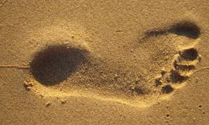 Early Humans Footprints