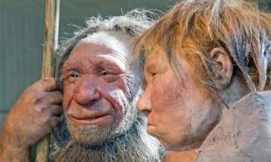 Neanderthals faced extinction