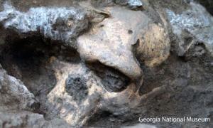 1.8-million-year-old skull - Georgia