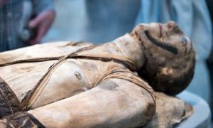 Egyptian mummy. Credit: Andrea Izzotti / Adobe Stock
