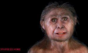 Hobbit - Homo Floresiensis