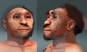 Homo erectus pekinensis, forensic facial reconstruction.
