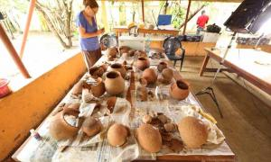 Nok Culture Pottery Reveals Honey Hunting Happened 3,500 Years Ago