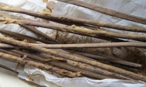 Personal 'hygiene sticks' used in toilets on the Silk Road. Hui-Yuan Yeh. Reproduced from the Journal of Archaeological Science