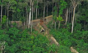 Uncontacted indigenous tribe in the Brazilian state of Acre